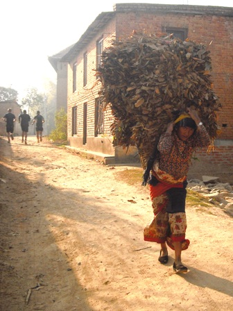 A common scene in Nepal - a woman carrying wood (Moire O'Sullivan)