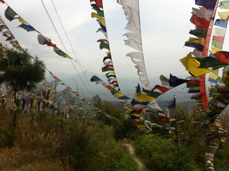 Prayer flags near Nagi Gomba